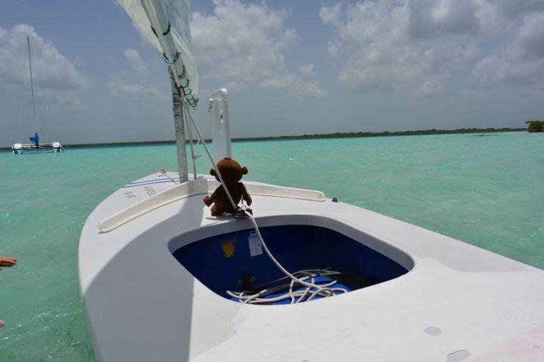 Mucuvinha velejando em Bacalar