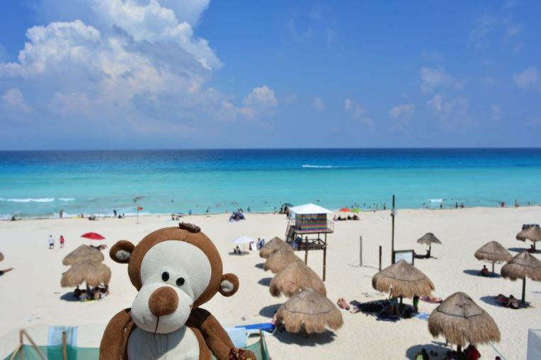 Mucuvinha na praia de Delfín, em Cancún
