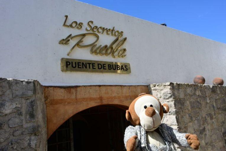 Mucuvinha nos túneis de Puebla