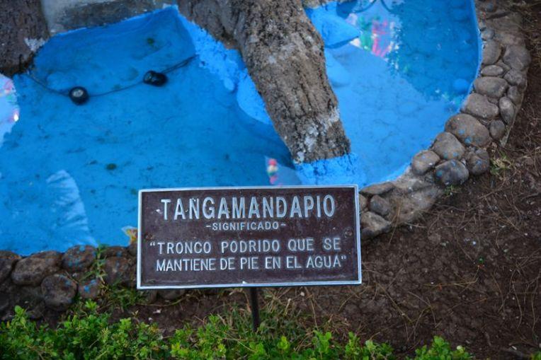 Significado de Tangamandápio
