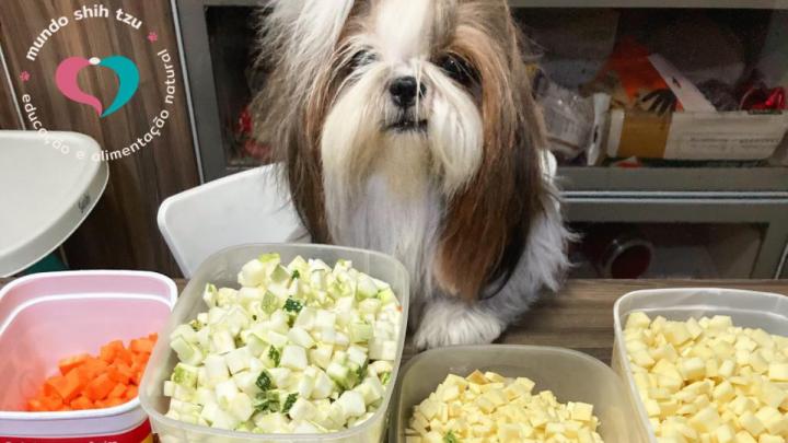 5 receitas de comida natural para cães
