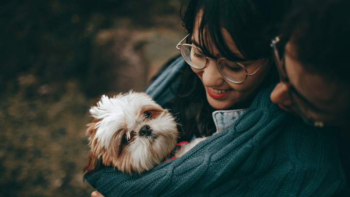 Seu cachorro é viciado em você?