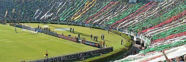 Top 10 maiores torcidas do Brasil - Palmeiras
