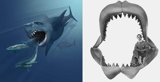 Top 10 animais incríveis que já foram extintos - Megalodonte