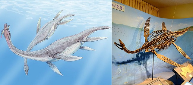 Top 10 animais incríveis que já foram extintos - Plesiosaurus