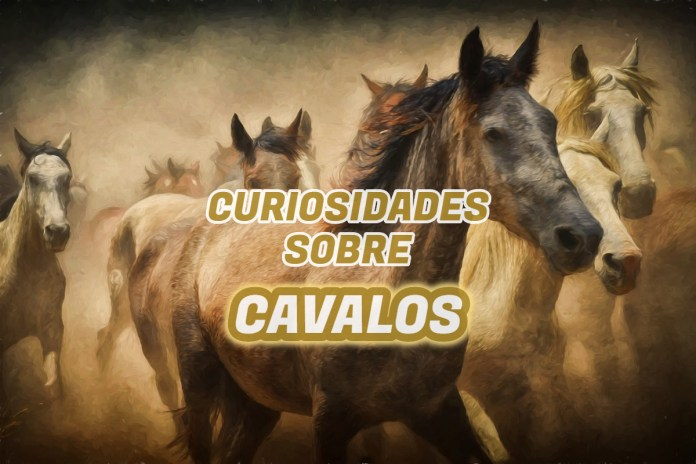 Top 10 curiosidades sobre Cavalos