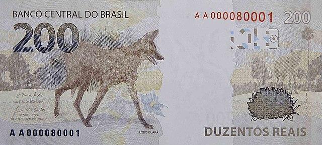 O lobo-guará está ameaçado