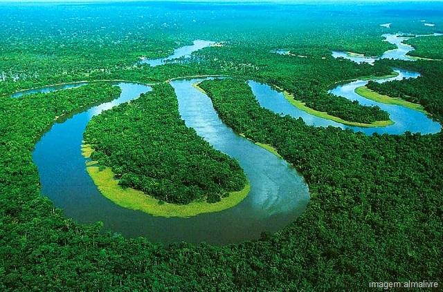 Qual é o maior rio do mundo - Rio Amazonas