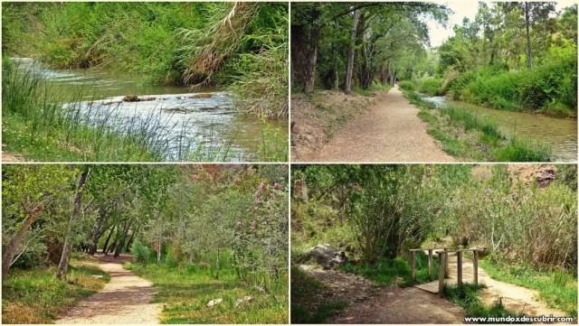 Collage ruta agua1