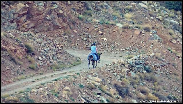 Alto Atlas de Marruecos
