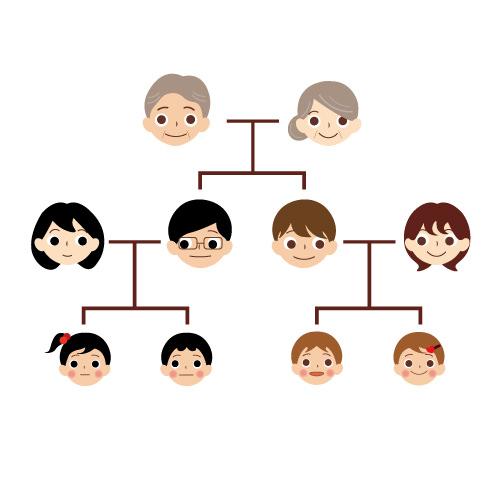 遺伝・家系図