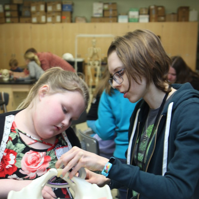 Area Students Learn and Have Fun at Mansfield University's IDEAS Day