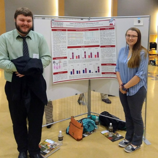Mansfield Biology students present research at Statewide STEM Conference