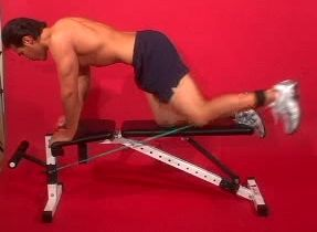 glute-kickback-with-cable.jpg