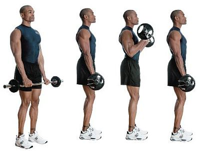 reversed-ez-bar-curl-for-forearms-and-biceps.jpg
