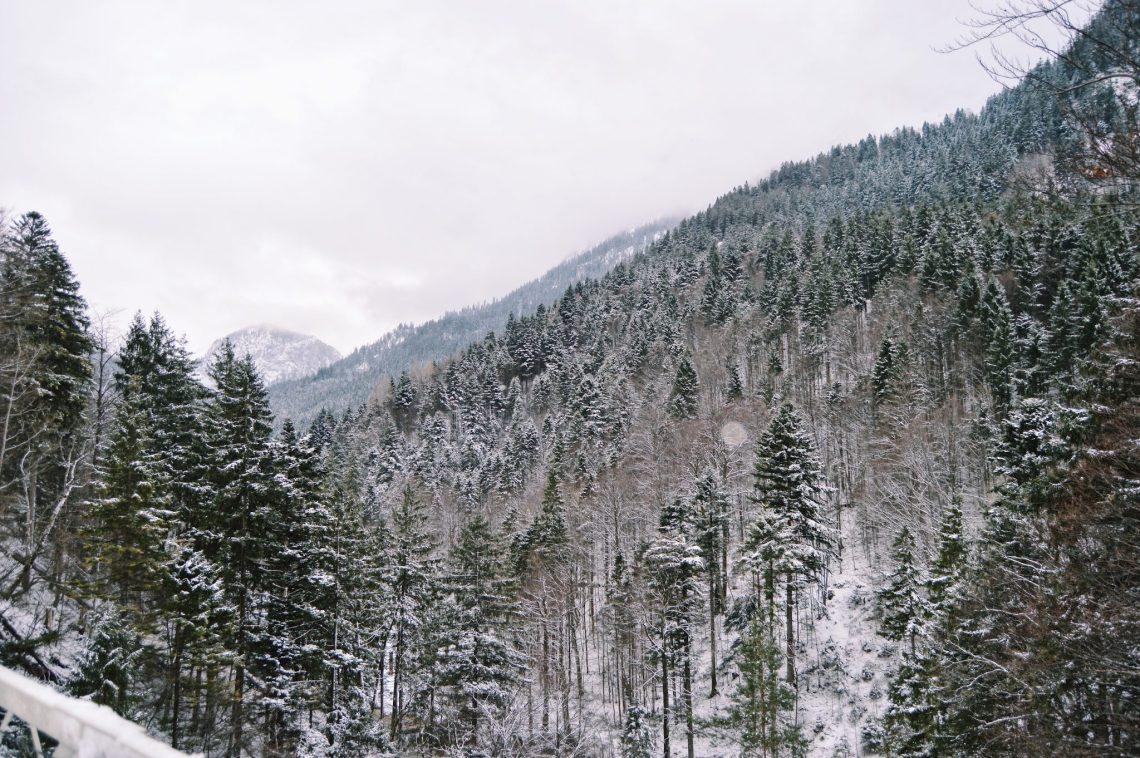 disney castle in snow