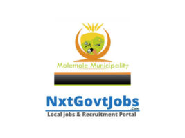 Molemole Local Municipality vacancies 2021   Capricorn Government jobs   Limpopo Municipality vacancies