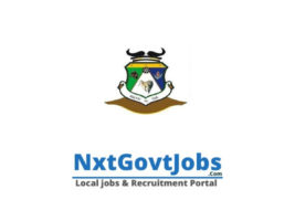 Ramotshere Moiloa Local Municipality vacancies 2021 | Ngaka Modiri Molema Government jobs | North West Municipality vacancies