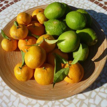 Sitroner og lime på et trefat