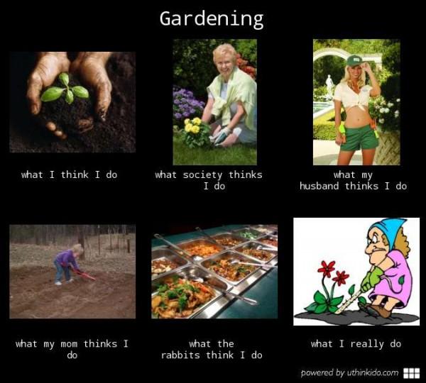 funny gardening memes