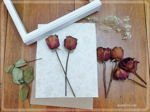 Dried Rose Shadow Box - simple but beautiful way to display dried flowers.