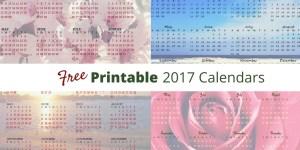 Free Printable 2017 Year at a glance calendars.Flowers and beach themes. 2017 calendar. flower calendar. beach calendar. sunset calendar.