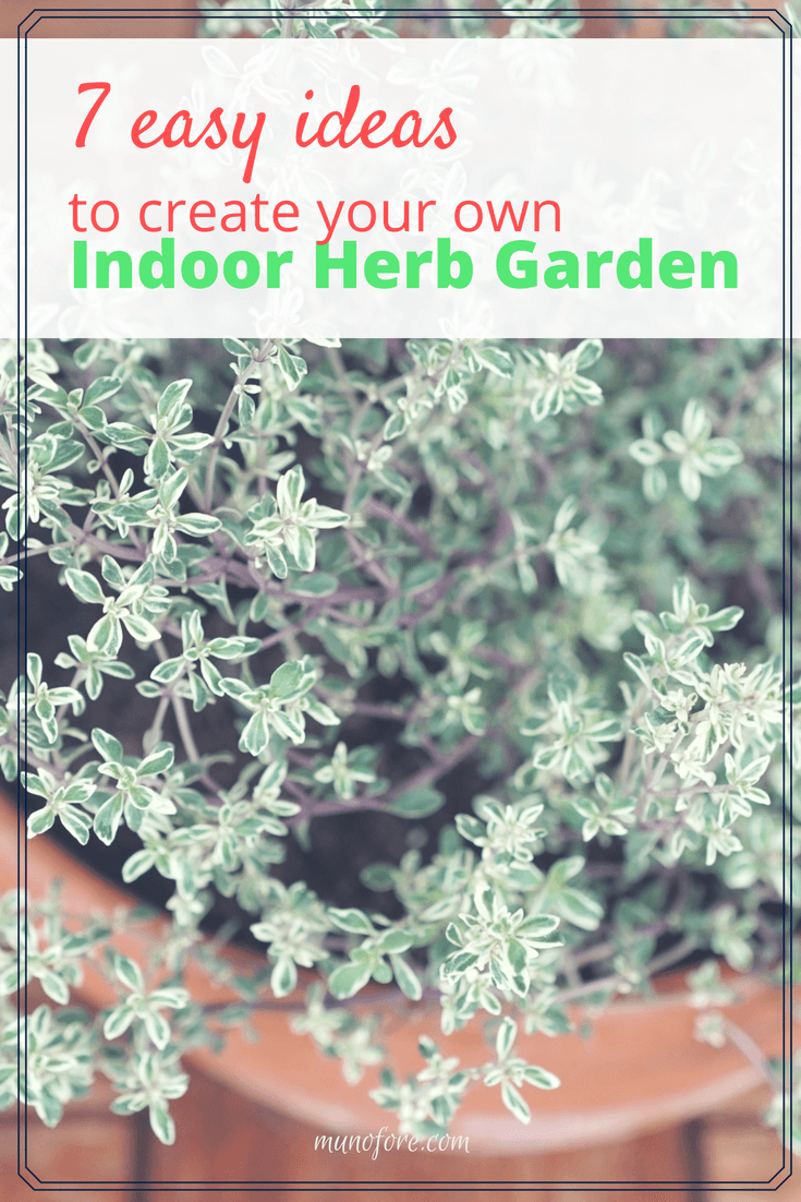 7 Easy Ideas To Help You Create Your Own Indoor Herb Garden For Fresh Herbs  Year