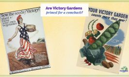 "vintage Victory Garden posters with tixt overlay ""Are Victory Gardens Primed for a Comeback?"""