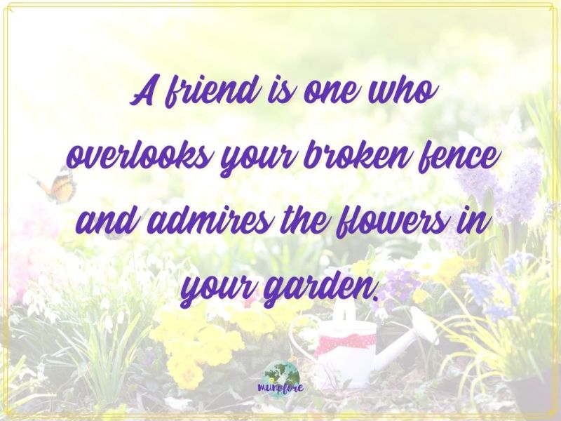 """""""A friend is one who overlooks your broken fence and admires the flowers in your garden"""" quote on image of flower garden"""