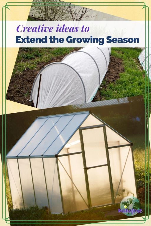 """collage of greenhouse and cold frames and text overlays """"cretive ideas to extend the growing season"""""""