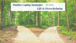 """two paths in the woods with text overlay """"Coping Strategies for when Life is Overwhelming"""""""
