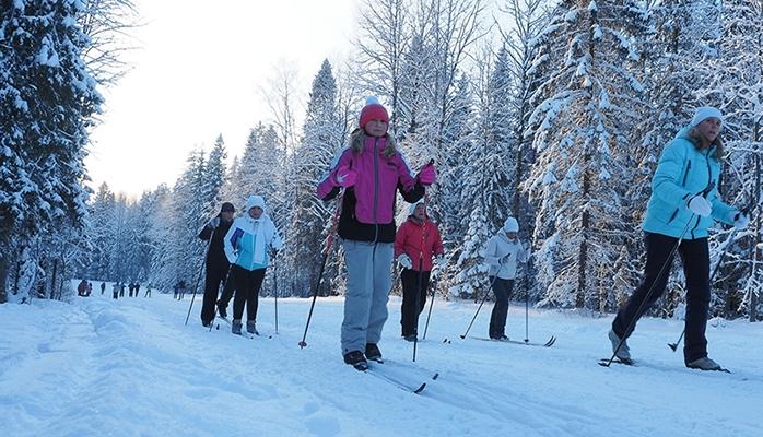 Лыжную трассу «Фонтаны» в Петрозаводске осветят за 4,6 млн рублей