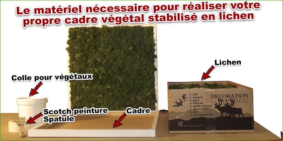 comment creer un cadre vegetal stabilise en lichen materiel