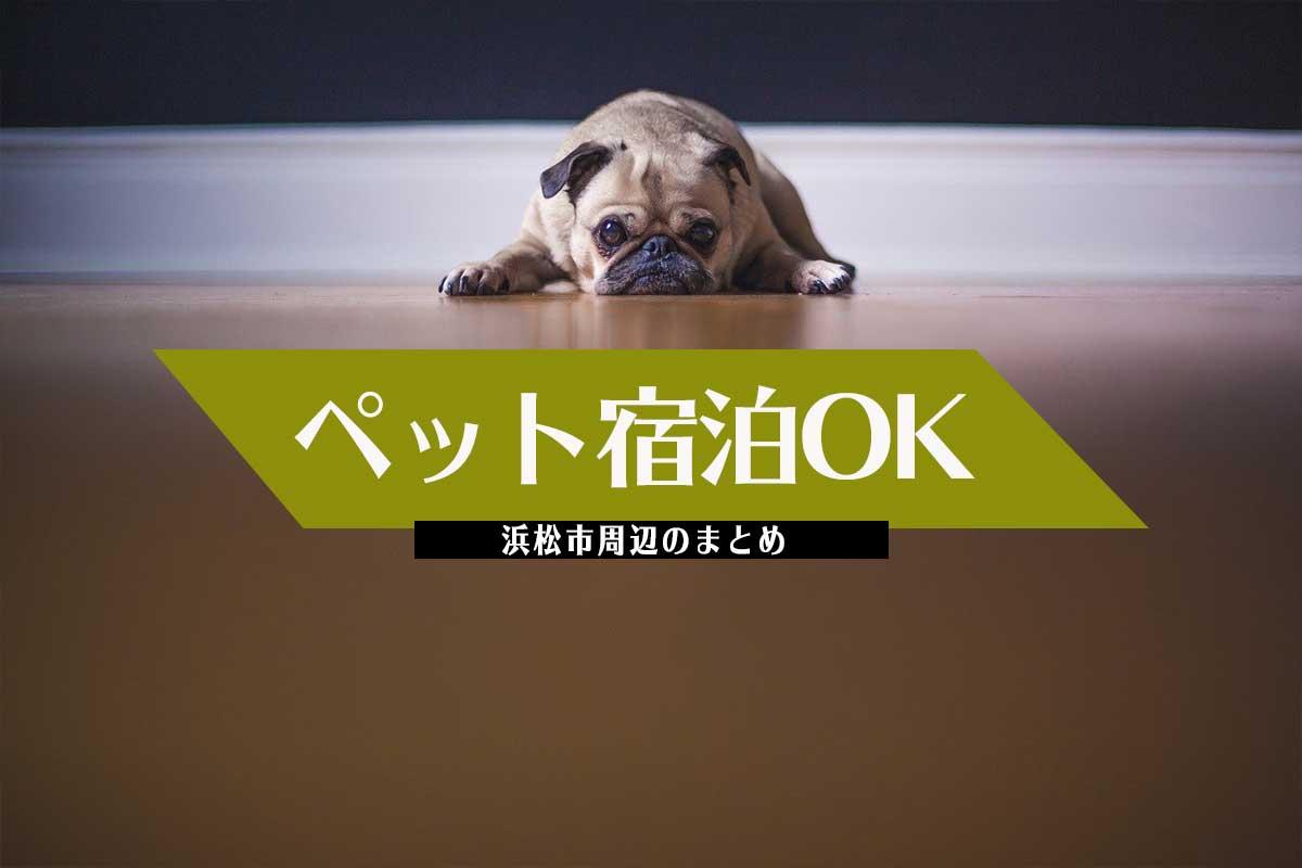 浜松市周辺のペット同伴OKの宿泊場所まとめ