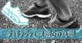 【シューズ選びの真理】おすすめダイエットジョギングシューズの変わらない選び方の法則