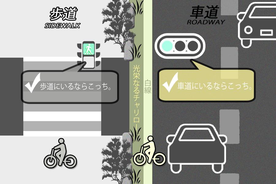 自転車ルール?