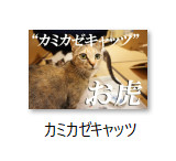 bandicam-2016-12-09-04-13-33-312