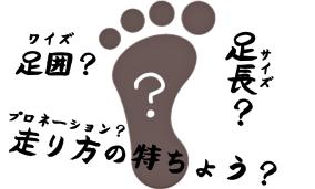 足に合う靴の測り方。「サイズとは、ワイズとは、プロネーションとは?」