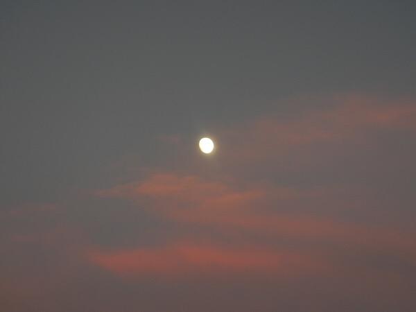 紅い夕暮れに輝くお月様!