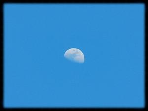 午後5時の月。