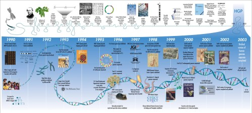 La línea del tiempo de los hitos en la ciencia de los genes (http://www.cienciasmc.es/web/u6/contenido1.3.1_u6.html)