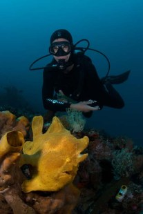 Pim & Giant Frogfish