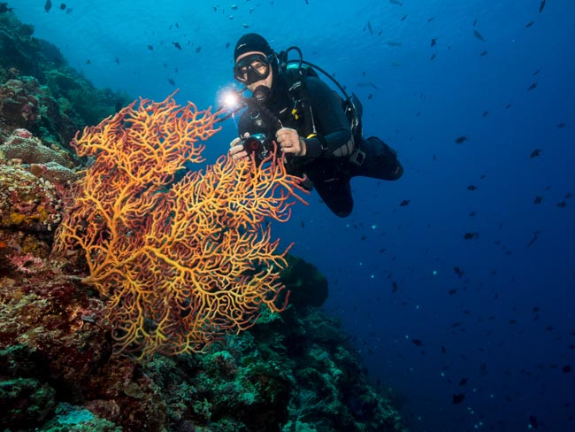 Pim from Murex diving Bunaken Island