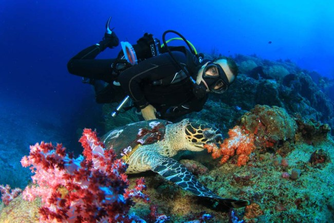Good buoyancy keeps you close to the reef