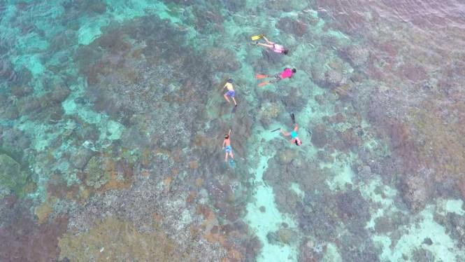 Bangka House reef snorkling