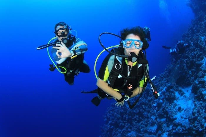 Murex Diving internship