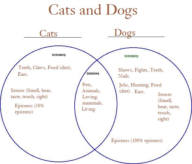 Venn Diagram Cat And Dog
