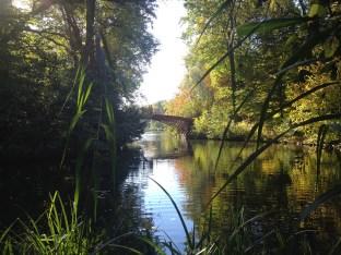 romantischer Teich