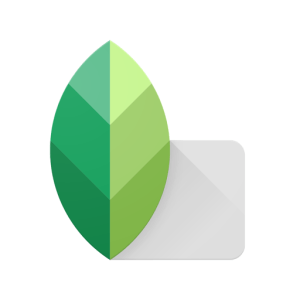 Google SnapSeed Photo Correction App for iOs and Android