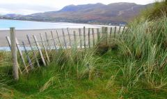 Fence on dunes at Betra beach, Co Mayo